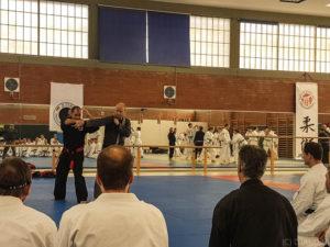 Andi Güttner zeigte knackige Techniken aus dem Ju-Jutsu Do